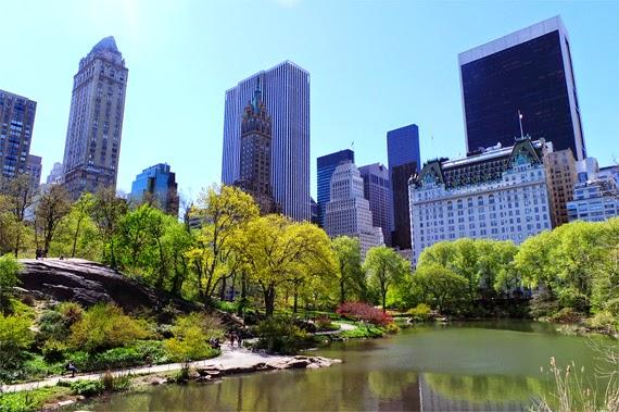 New York, © Andrea David