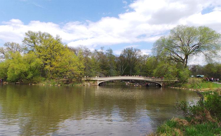 Bow Bridge, Central Park, New York © Andrea David