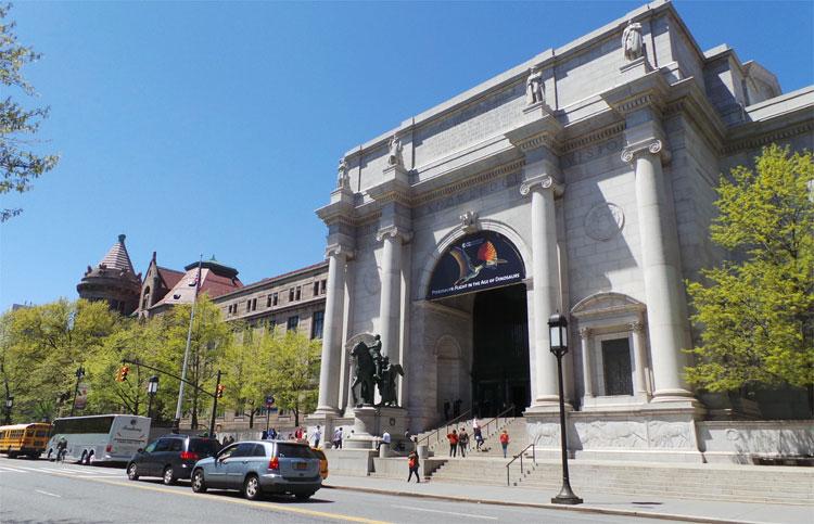 American Museum of Natural History, New York © Andrea David