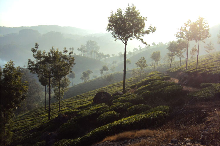 reiseblogger-drehorte-indien