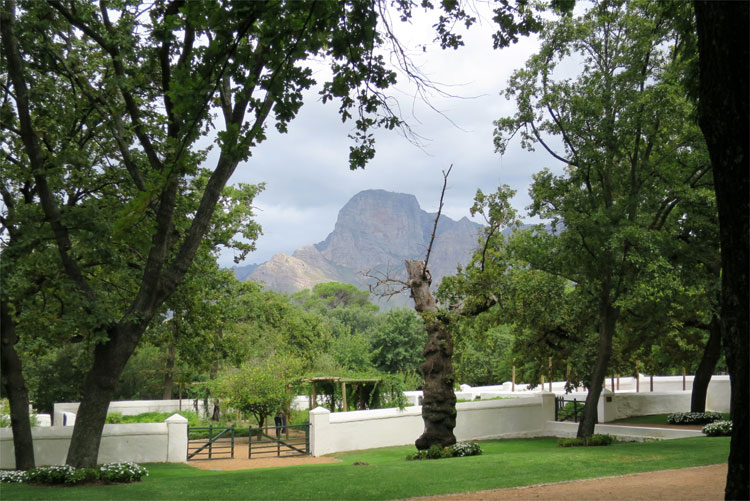 Boschendal Weingut, Südafrika © Andrea David