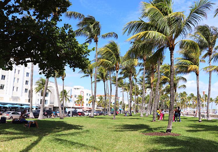 Lummus Park, Miami, Florida