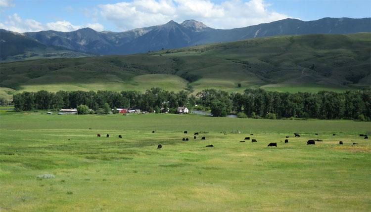 Engle Ranch, Boulder River, Montana © Andrea David