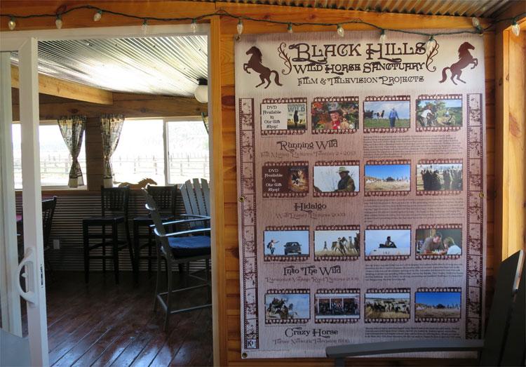 Black Hills Wild Horse Sanctuary, South Dakota © Andrea David