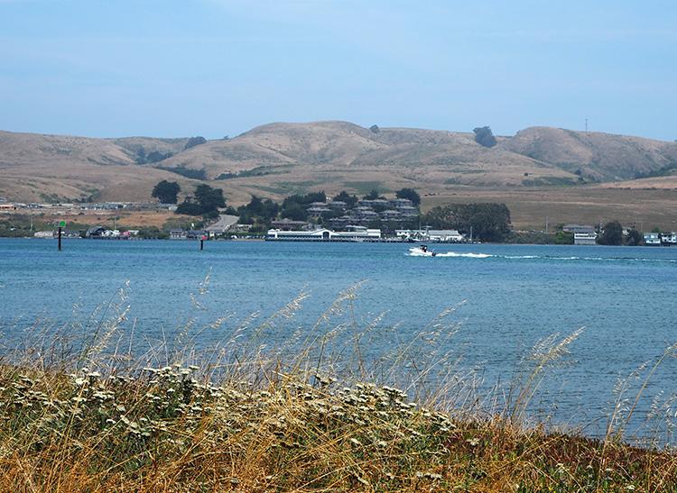 Blick über die Bodega Bay