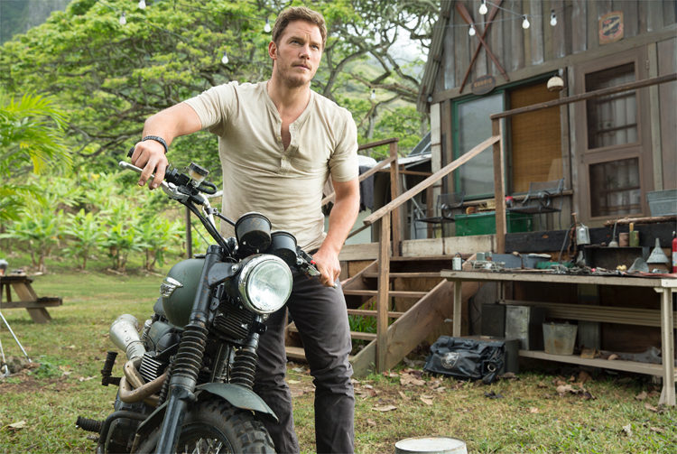 "Dinoflüsterer Owen (Chris Pratt) in ""Jurassic World"" © Universal Pictures"
