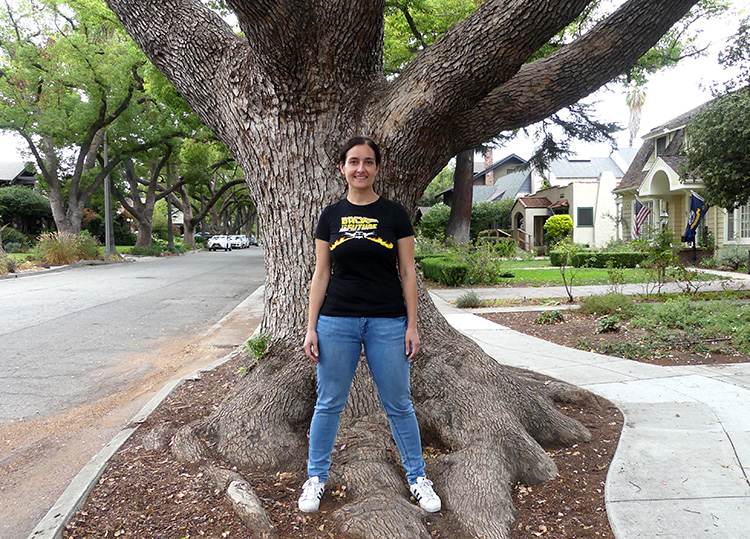George McFly Tree in Pasadena, Los Angeles