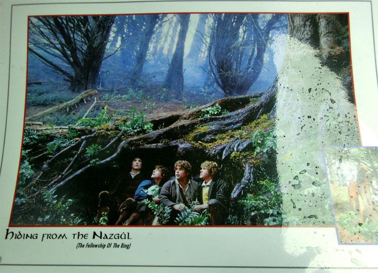 Hobbit-Versteck, Wellington, Neuseeland © Corinna Laimer