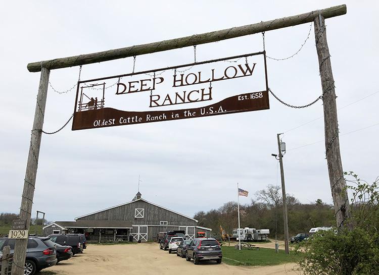 Deep Hollow Ranch, Montauk, Long Island