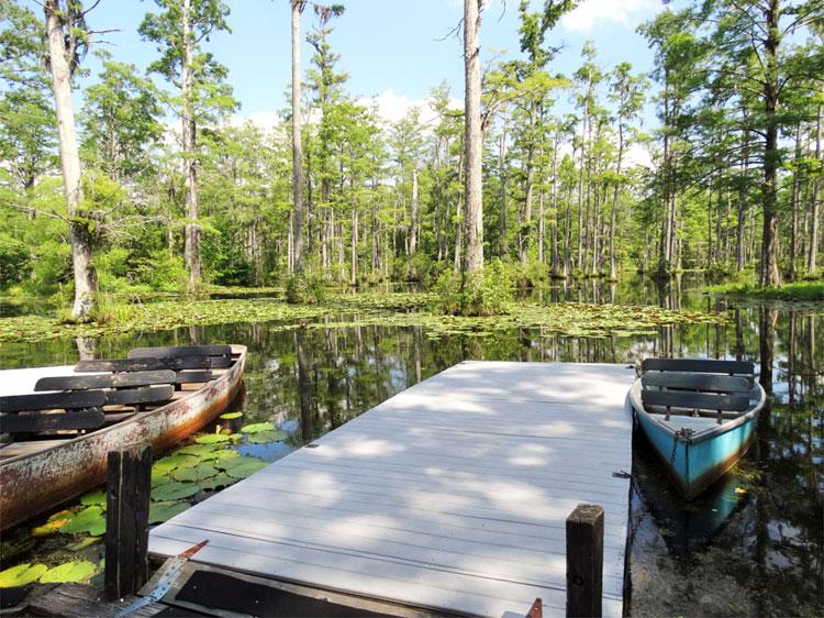 Cypress Gardens, South Carolina © Mandy Decker / Travelroads