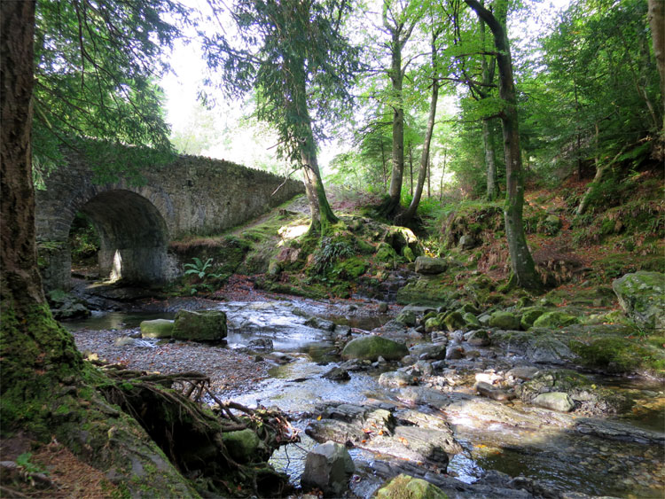 Parnell Bridge Tollymore Forest, Nordirland © Andrea David