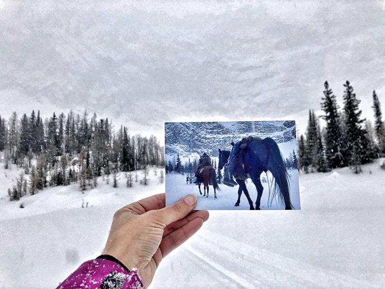 """""""The Revenant"""" Drehort, Fortress Mountain, Kananaskis Country, Alberta"""