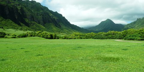 Jurassic Valley auf Oahu