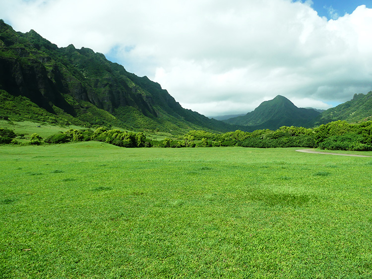 Jurassic Valley auf Oahu
