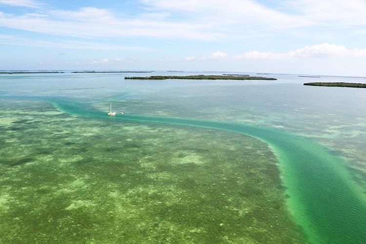 Helikopterflug, Florida Keys