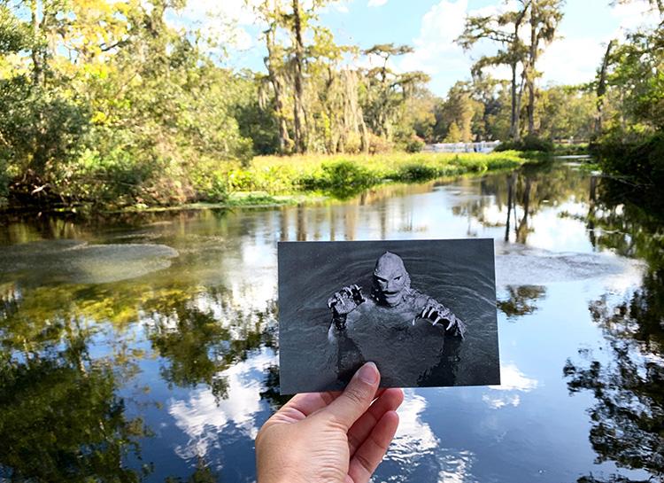 """Drehort aus """"Der Schrecken vom Amazonas"""", Wakulla Springs State Park, Florida"""