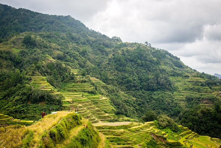 """""""Infinity War""""-Drehort Reisterrassen von Banaue, Provinz Ifugao, Philippinen"""