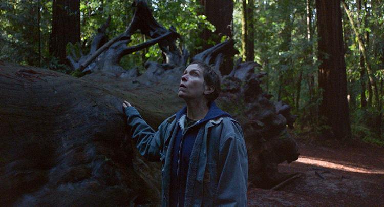 "Filmszene aus ""Nomadland"" im Redwood State Park, Kalifornien"