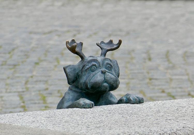 Waldmops in Brandenburg an der Havel